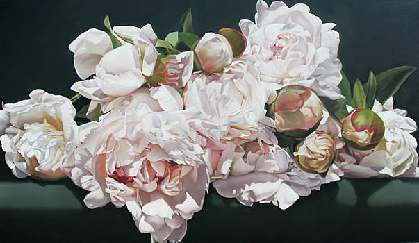 Peonies by Thomas Darnell