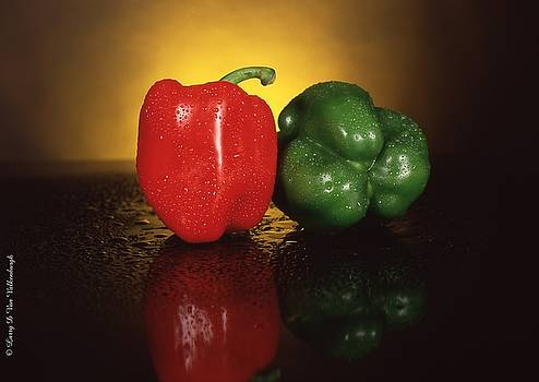 Peppers by Larry Van Valkenburgh