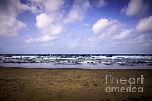 Paul Velgos - Photo of Beach and Pacific Ocean