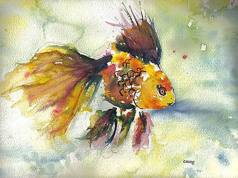 Casey Shannon - Phyco Fishy