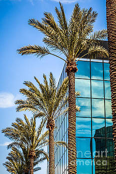 Paul Velgos - Picture of Palm Trees and Office Building