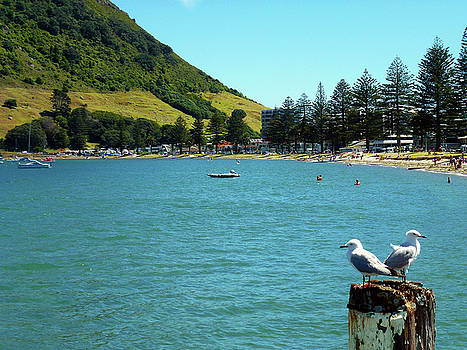 Pilot Bay Beach 5 - Mt Maunganui Tauranga New Zealand by Selena Boron