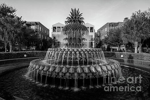 Dale Powell - Pineapple Fountain in Black and White