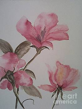 Pink Floral by Ginny Youngblood