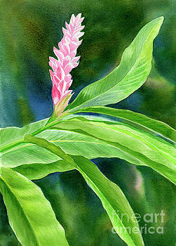 Pink Ginger with Blue Green Background by Sharon Freeman