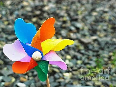 Pinwheel_ by Tin Tran