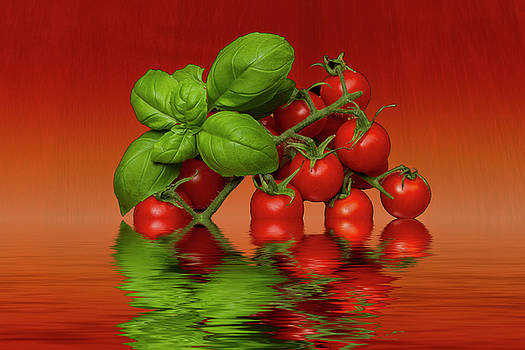 Plum Cherry Tomatoes Basil by David French