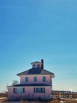 Plum Island Pink House  by Mary Capriole
