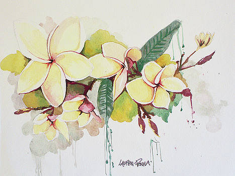 Plumerias by Lauren Penha