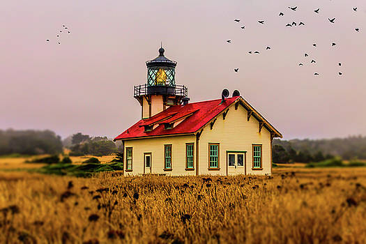 Point Cabrillo Lighthouse by Garry Gay