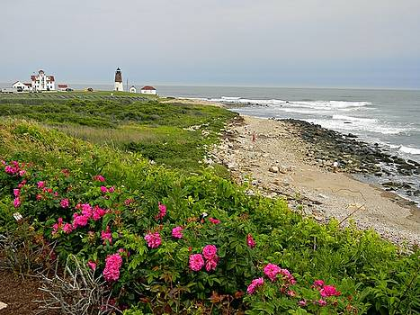 Point Judith by Diane Valliere