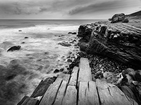 Point Loma Tide Pools by Alexander Kunz