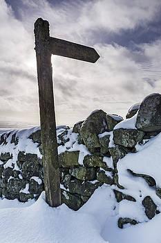 David Taylor - Sign pointing the way