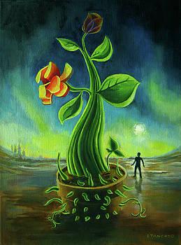 Ponzi Flora by Michael Stancato