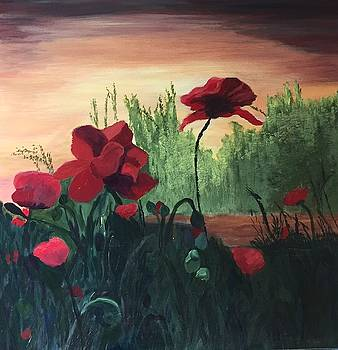 Poppies by Jane Croteau