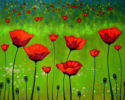 Poppy Cluster I by John  Nolan