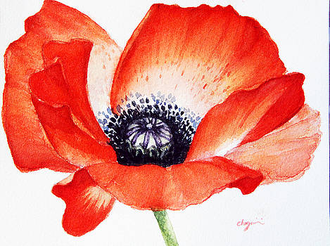 Poppy flower  by Mahsa Watercolor Artist