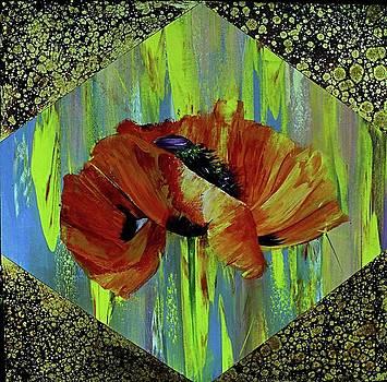 Poppy by Nelu Gradeanu