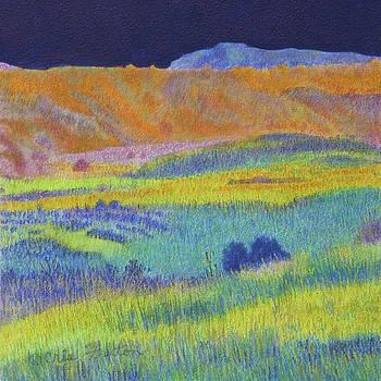 Prairie Evening Dream by Cris Fulton