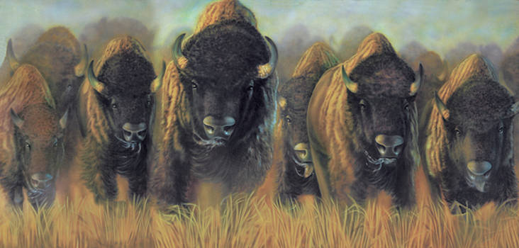 Prairie Thunder by Wayne Pruse