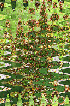 Prickly Pear Cactus Abstract by Tom Janca