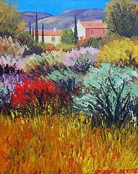 Provence In Bloom by Santo De Vita