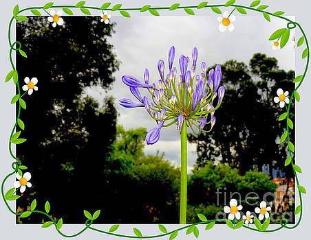 Purple Purple by Al Bourassa