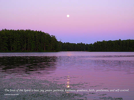 Purple Sunset with Bible Verse by Lynn Harrison