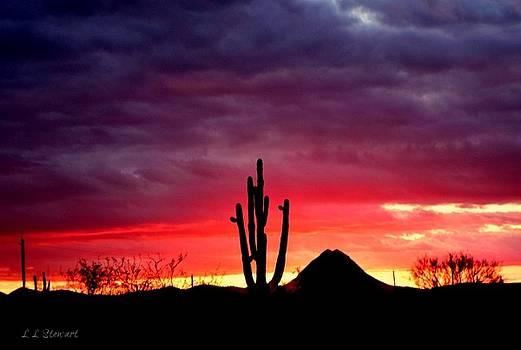 Quiet Sunset by L L Stewart