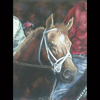 Racin' Sunset by Linda Medders-Jackson