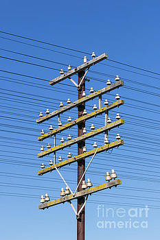 Railway Power And Communications Signalling Cables On Pole by Carl Chapman