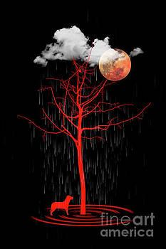 Rain by Barbara Dudzinska