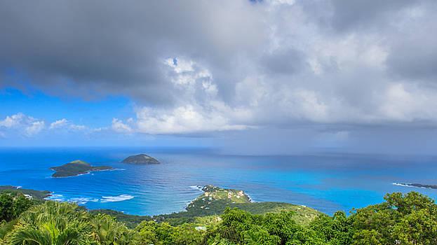 Rain in the Tropics by Keith Allen