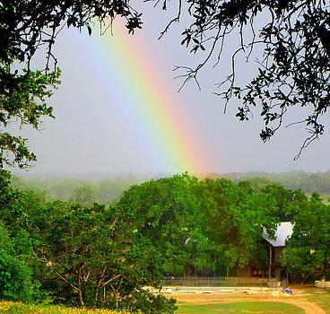 Rainbow by Billie Earley