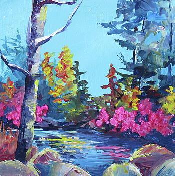 Rainbow River by Bonny Roberts