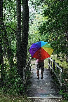 Rainy Day by Judy  Johnson