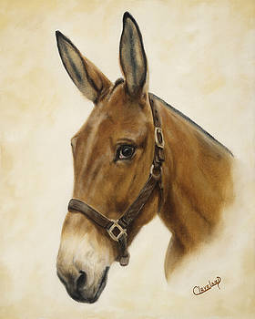 Ready Mule by Cathy Cleveland