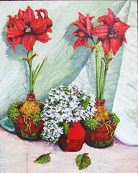 Red Amaryllis with Shooting Star Hydrangea by Thomas Michael Meddaugh