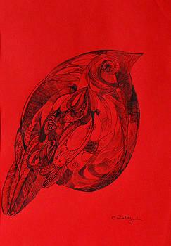 Red. Bird by Cristina Rettegi