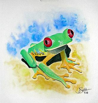 Red Eyed Tree Frog by Jimmy Smith