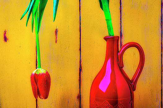 Red Pitcher And Tulip by Garry Gay