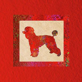 Bamalam Photography - Red Poodle