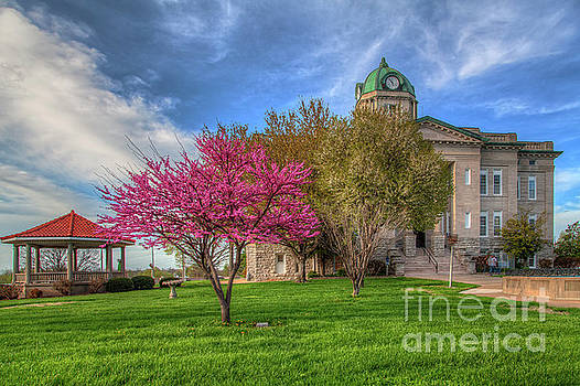 Larry Braun - Redbud at the Courthouse