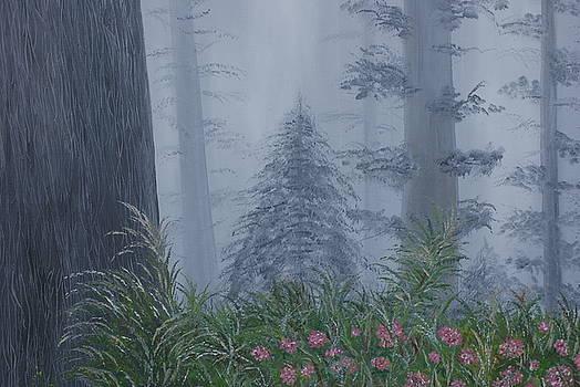 Redwoods In Fog by William Ohanlan