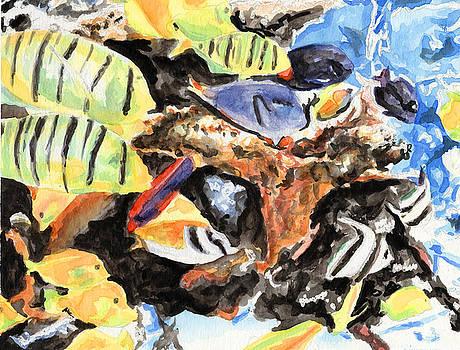 Reef by Megan Welcher
