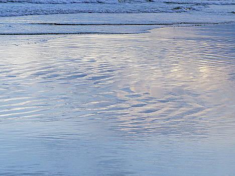 Reflect by Tran Minh Quan