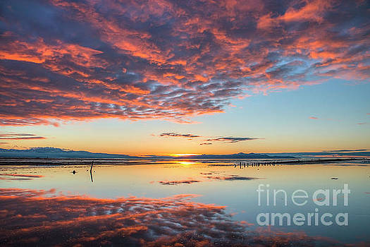 Reflected Sunset by Spencer Baugh