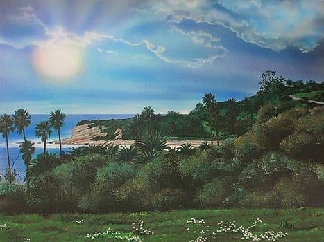 Angie Hamlin - Refugio Point 4