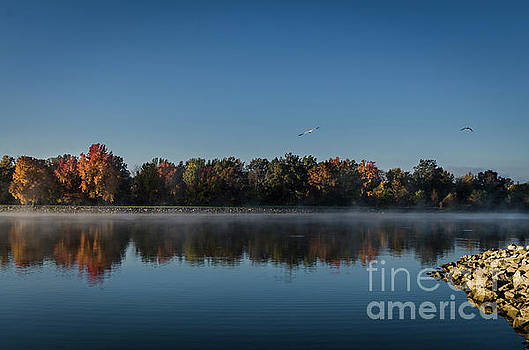 Chilly Morning on Rend Lake by Andrea Silies