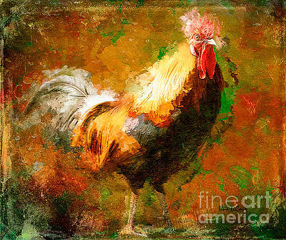 Rhode Island Red Rooster by Tina LeCour